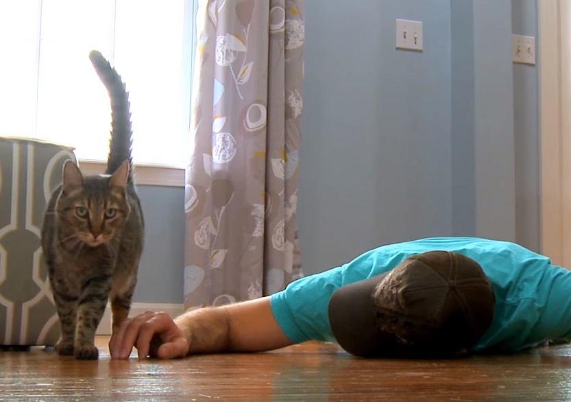 Upozorował śmierć, żeby sprawdzić, jak zachowa się jego kot.