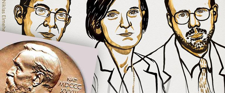 Nobel z ekonomii dla: Abhijit Banerjee, Esther Duffo'a i Michael Kramera