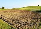 Ziemia lepsza niż lokata. Bańka cenowa na rynku nieruchomości rolnych?