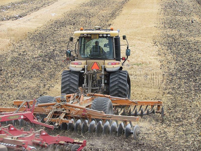 GUS uznał wszystkich Polaków za rolników