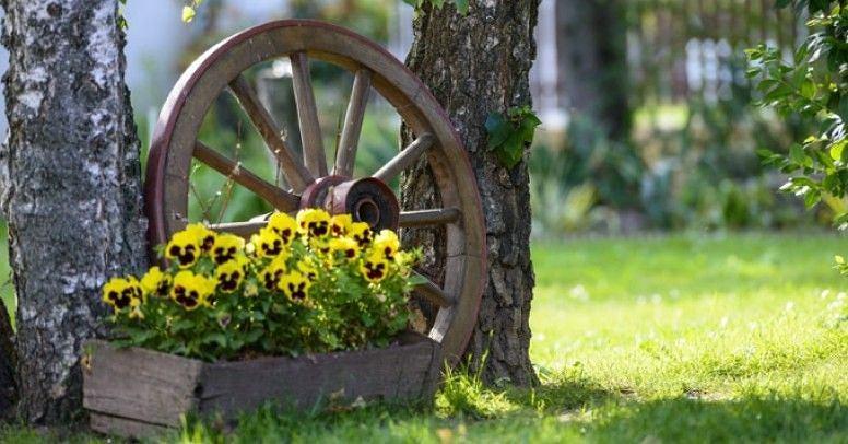 Ozdobą do ogrodu może być drewniane koło