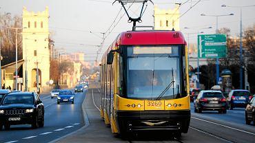 Plaga komarów w Warszawie. Były nawet w tramwaju