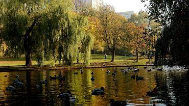 Park Kusocińskiego w Olsztynie