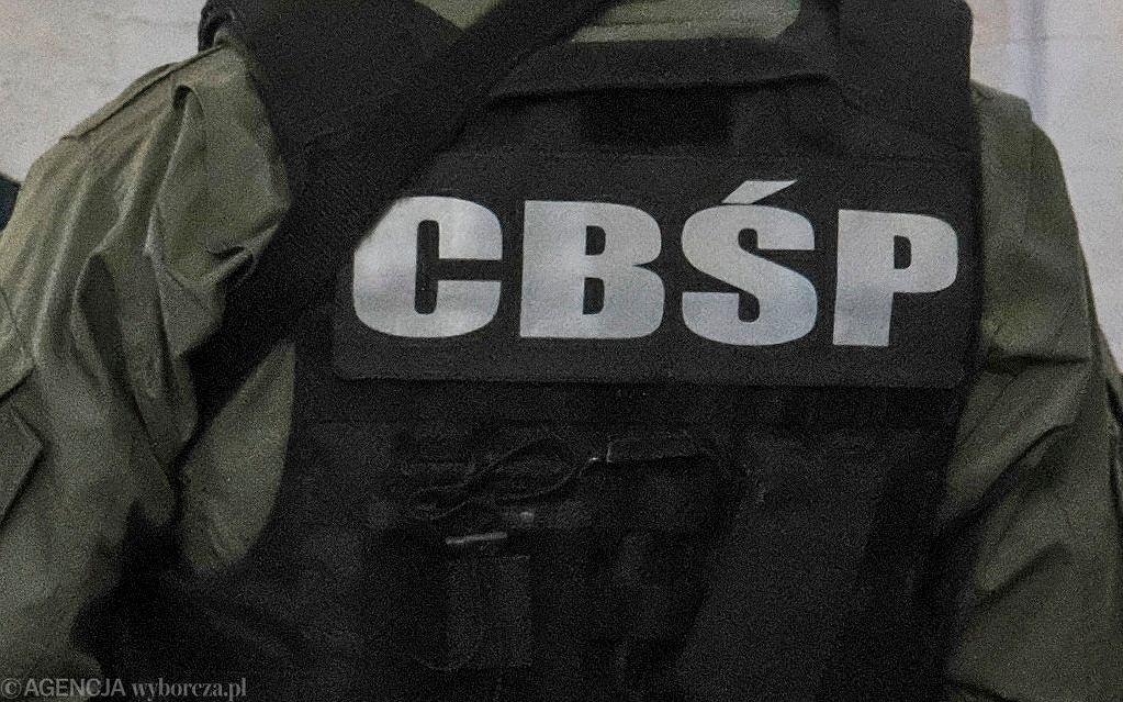 Agent CBŚP (Zdjęcie ilustracyjne)