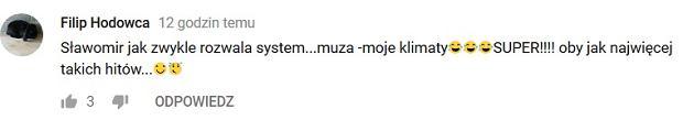 Komentarz pod teledyskiem do utworu 'Ty mała znów zarosłaś' w serwisie YouTube