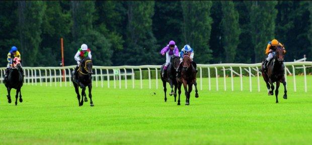 Wypatrzyć fuksa, czyli co nas jara w wyścigach konnych