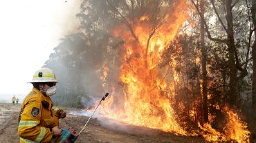 Samotny strażak z Australią