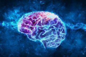 Naukowcy zidentyfikowali obszar mózgu kluczowy dla świadomości. Eksperyment przeprowadzono na małpach