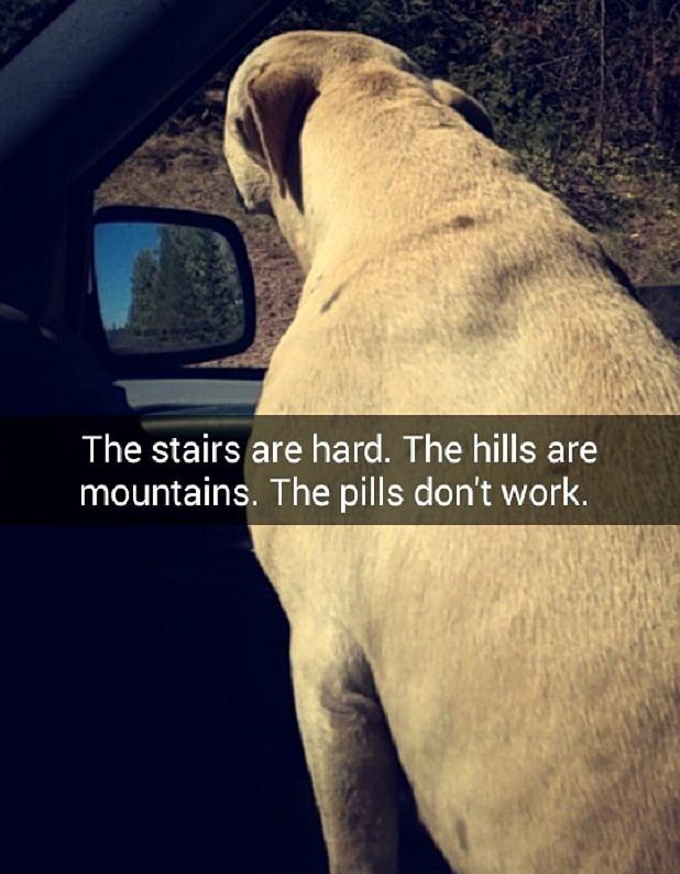 Wchodzenie po schodach sprawiało jej trudność. Lekarstwa już nie działały
