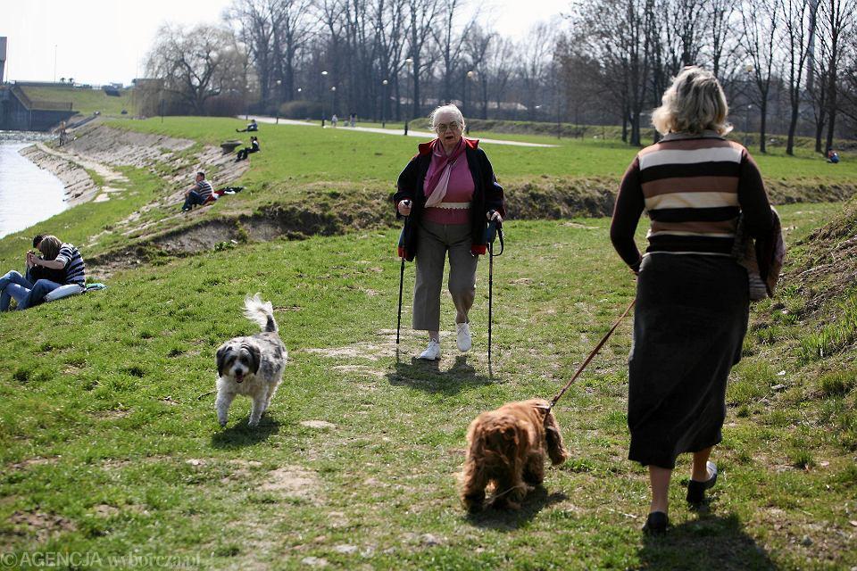 Ludzie starsi też chcą mieć psy