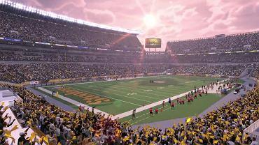 NFL - screen z gry