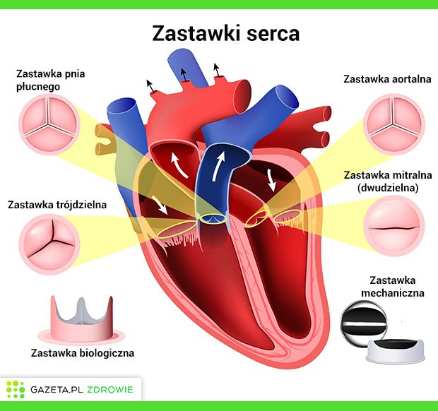 Zastawki serca