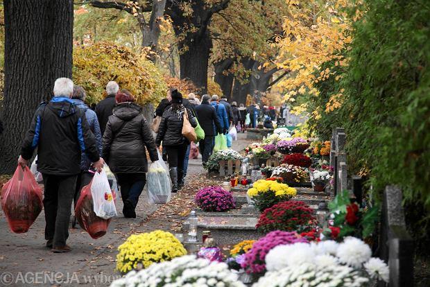Zdjęcie numer 35 w galerii - Wszystkich Świętych we Wrocławiu. Cmentarze w kwiatach [ZDJĘCIA]