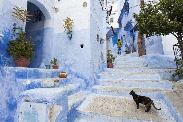 Szawszawan, Maroko/ Fot. Shutterstock