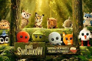 To już oficjalne: Gang Swojaków w Biedronce. Znamy datę rozpoczęcia akcji