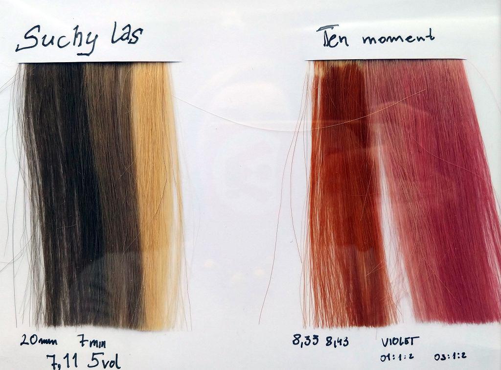 Takie jak po prawej stronie kolory wymagają wcześniejszego rozjaśnienia włosów.