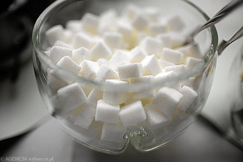 Deregulacja rynku cukru w UE wpłynie na ceny