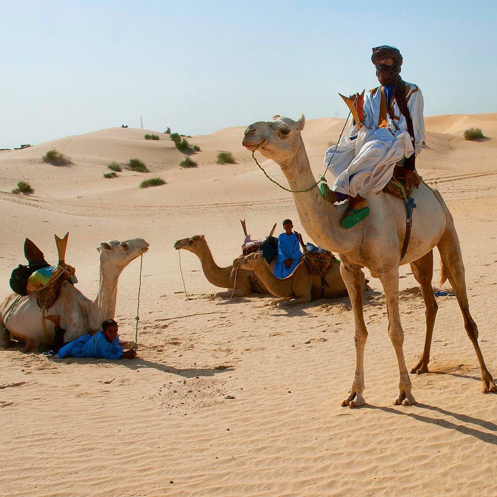 Tuaregowie naSaharze