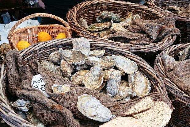 Świeże ostrygi sprzedawane na targu w Bretanii / fot. Shutterstock