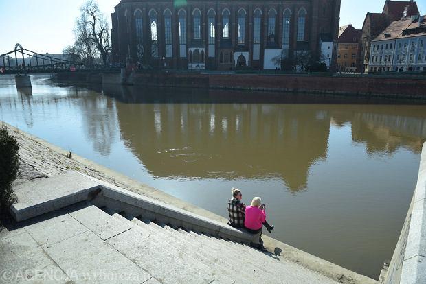 Zdjęcie numer 28 w galerii - Piękna pogoda wyciągnęła wrocławian z domów. Dużo spacerowiczów w Rynku i na bulwarach [ZDJĘCIA]