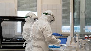 Koronawirus. Lubuska marszałek kupi testy za 5 mln zł. Będzie można przebadać 72 tysiące mieszkańców