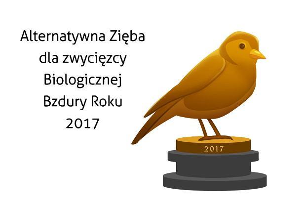 Projekt Alternatywnej Zięby został wykonany specjalnie do Biologicznej Bzdury Roku przez rysowniczkę Revv Rysuje