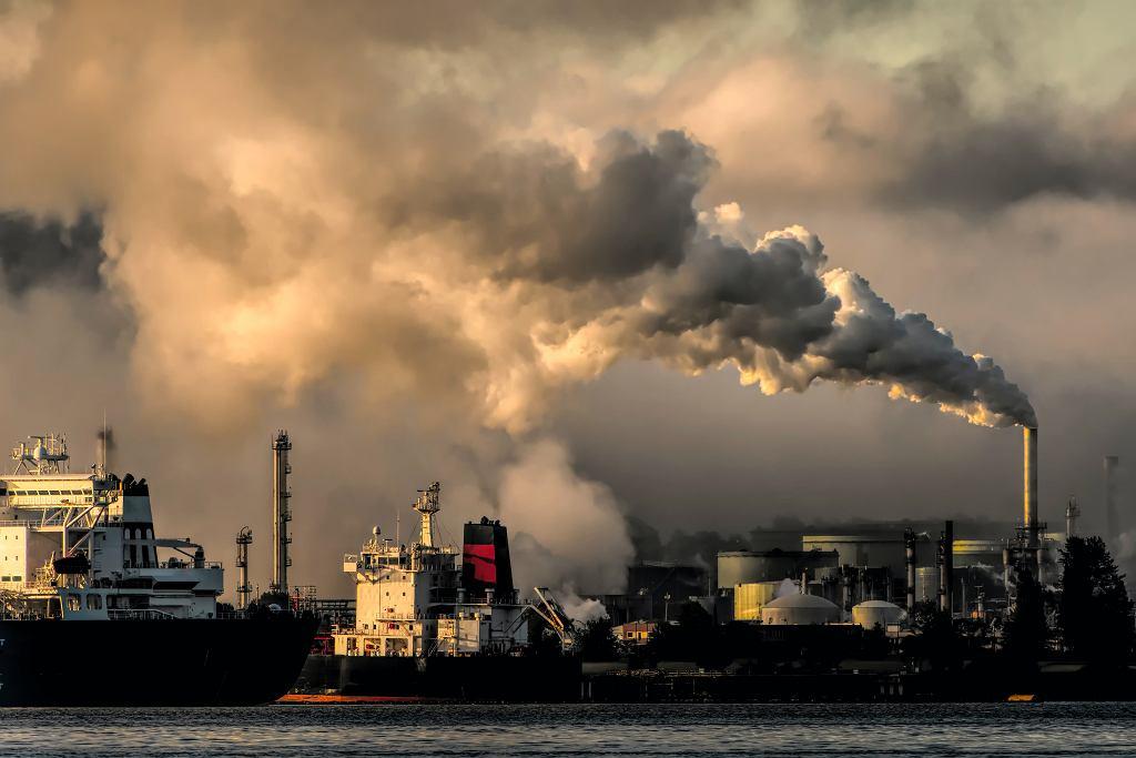 Pięć osób pozywa polskie władze za zmiany klimatu. 'Chcę bezpiecznej przyszłości'