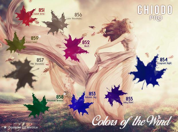 Kolory lakierów do paznokci marki Chiodo stworzonych przez Edytę Górniak
