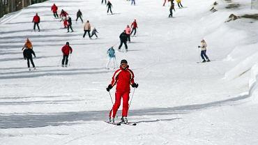 Bezpieczeństwo na stoku narciarskim - jak uniknąć wypadku na nartach? / fot. Shutterstock
