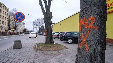 Zaczyna się przebudowa ośmiu ulic w Rzeszowie. Od wycinki drzew