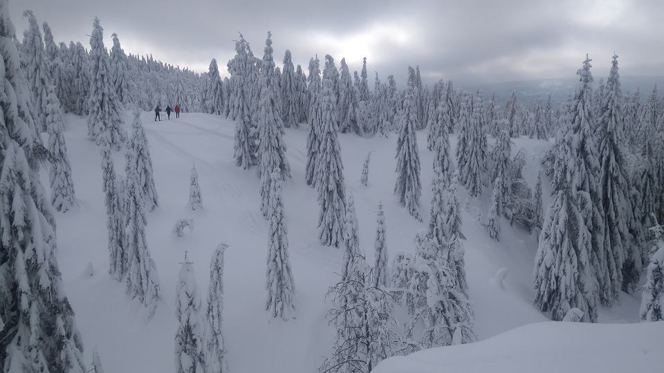 Na narty do Jakuszyc. Droga do Chatki Górzystów, pod Wysoką Kopą