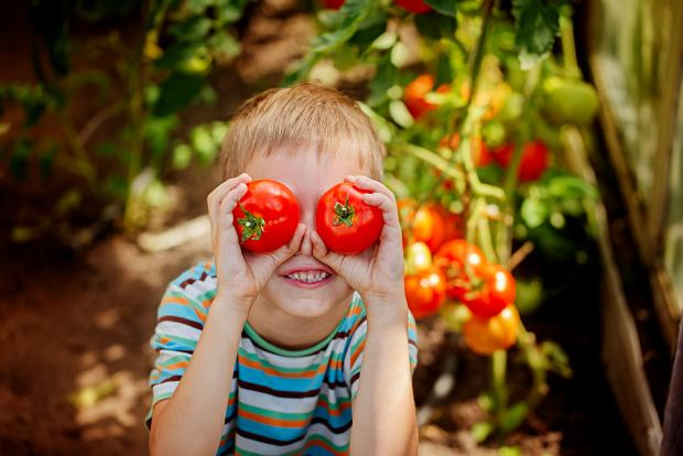 Pomidory - dlaczego, jak i z czym je jeść?