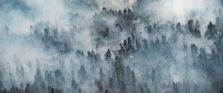 Indonezja płonie. Na pomoc wezwano siewców chmur