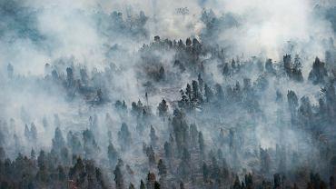 Pożar w Indonezji
