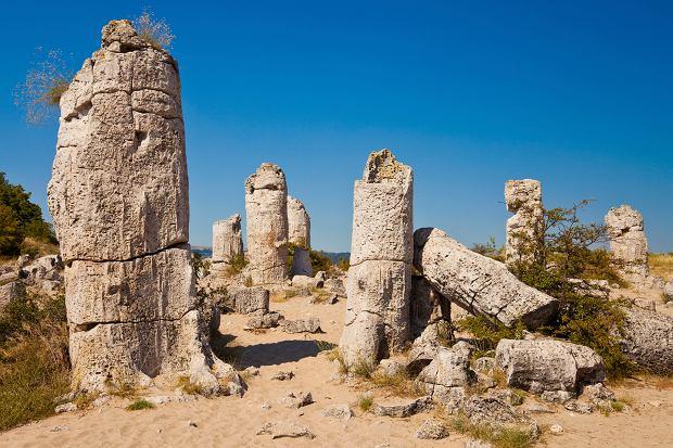 Kamienny Las (Pobiti Kamyni)
