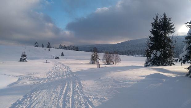 Na narty do Jakuszyc. Hala Izerska