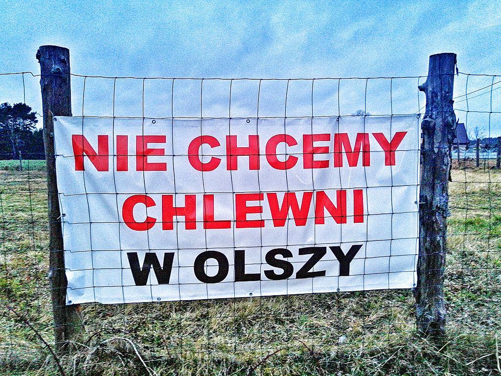 Protest przeciwko chlewni w Olszy