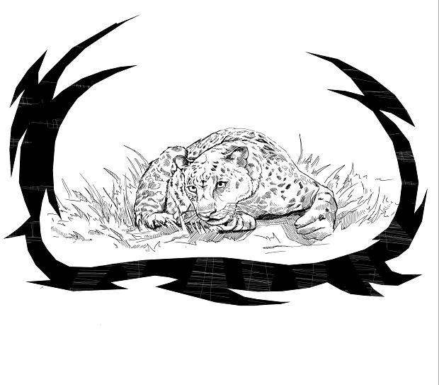 Ilustracja z książki 'Marek i czaszka Jaguara'