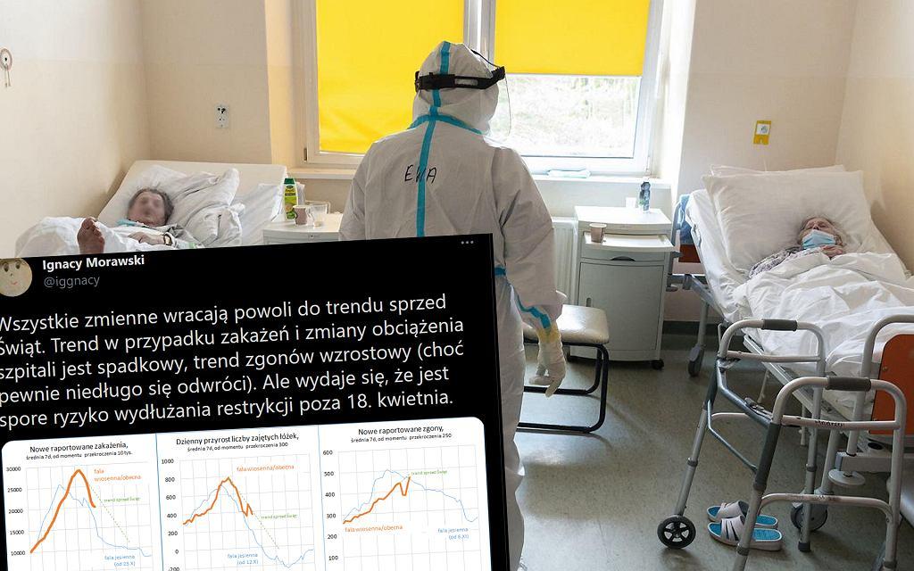 Trendy pandemii