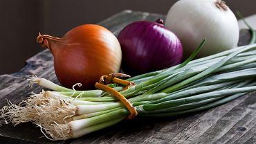 Cebula jest nie tylko smacznym warzywem o wyrazistym smaku. Posiada wiele właściwości prozdrowotnych i leczniczych.