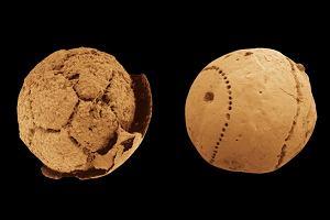 Metody datowania skał i skamielin stosowane przez paleontologów