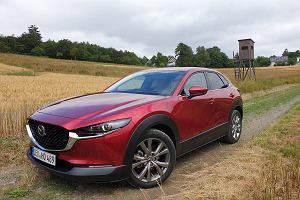 Opinie Moto.pl: nowa Mazda CX-30 - Mazda lubi chodzić własnymi drogami, CX-30 jest na to kolejnym dowodem