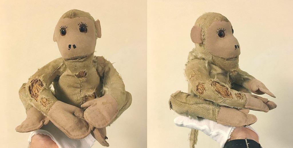 Małpka PM-ek trafiła do Muzeum Warszawy
