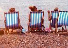 Sand.ee - dzięki tej stronie znajdziesz idealną plażę