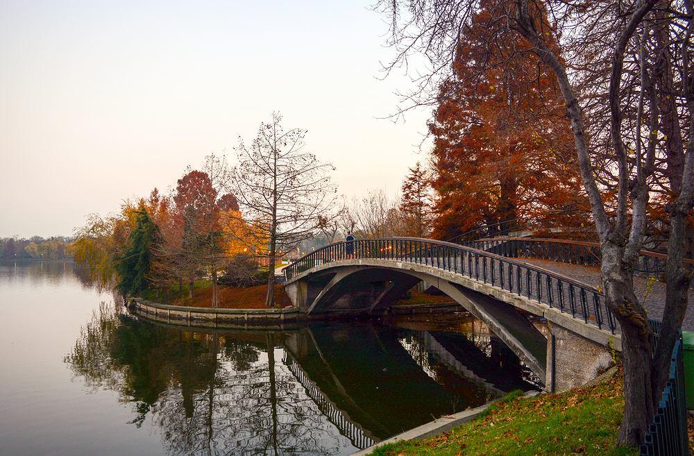 Mostek w parku Herastrau