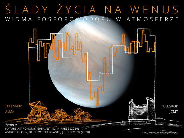 Fosforowodór w atmosferze Wenus - infografika