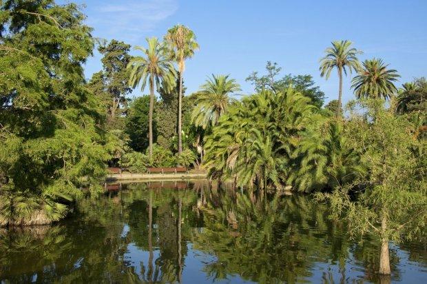 Jezioro w Parc de la Ciutadella/ Fot. Shutterstock