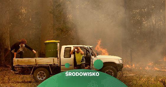 Australia pożary.