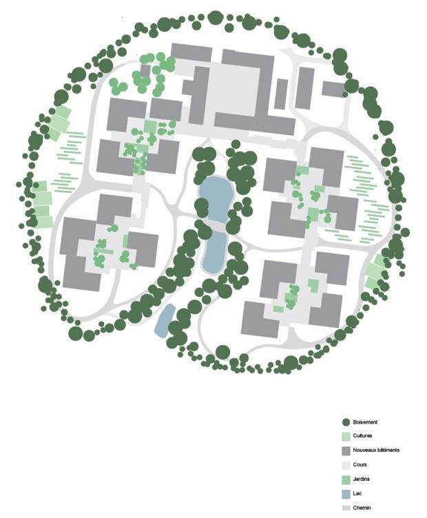 Plan wioski