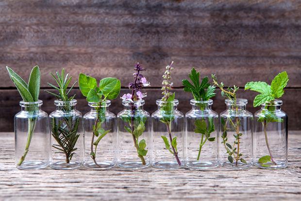 Olejki eteryczne - naturalne substancje zapachowe - właściwości i zastosowanie